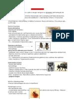 Parasitologia Veterinária