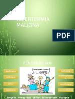 Hipertrmi Malgina (Refreshing)