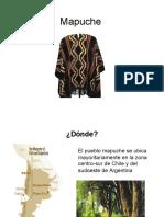 Historia del vestuario 8 MApuche y Pascuense