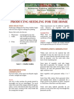 Producing Seedlings for the Home Garden