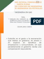 ANÁLISIS DEL SUBSIDIO AL GAS