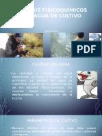 Análisis Físicoquímicos Del Agua de Cultivo_2