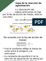 AGUIRRE Primera etapa de la reacción de aglutinación.pptx