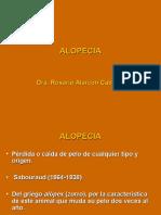 ALOPECIA 2008 (PPTminimizer).ppt