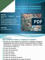 ZONIFICACION ECOLOGICA ECONOMICA (ZEE) DE LA.pptx