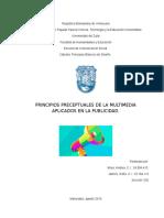Principios Preceptuales de La Multimedia Aplicados en La Publicidad 2