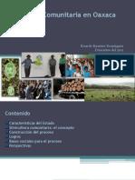 3272Silvicultura Comuntaria en Oaxaca
