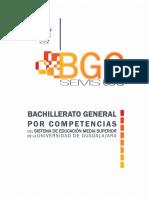 BGC-UDG Documento Base Evaluado COPEEMS (1)