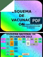 Esquema de Vacunación y Esquema Acelerado