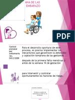 DETECCION TEMPRANA DE LAS ALTERACIONES DEL EMBARAZO