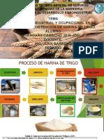 Harina de Trigoseguridad Industrial (1)
