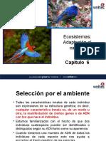 Capitulo 6 Ecosistemas Adaptacion Al Cambio