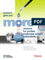 Thermo Scientific Pierce Protein Ladders Guide
