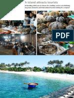 An Binh Island Attracts Tourists