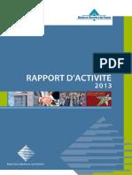 Rapport Activite 2013