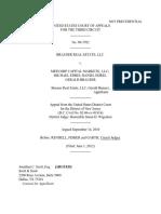 Brauser Real Estate LLC v. Meecorp Cap Markets LLC, 3rd Cir. (2012)