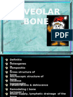 Alveolar Bone Perio