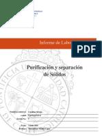 Proforma+Informe+QIM101Q