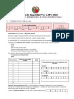 Encuesta Seguridad Vial PDF