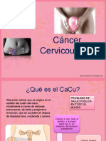 cancercervicouterino-130808204011-phpapp01
