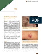 zooparasitarias.pdf