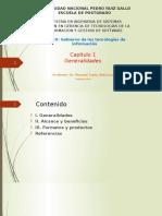 Cap. 1 - COBIT 5