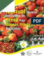 fresa BPA_1.pdf