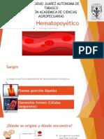 Tejido Hematopoyético