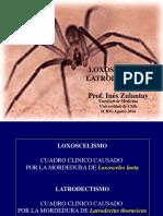 LOXOSCELISMO-LATRODECTISMO_4_AGOSTO_2016.pdf