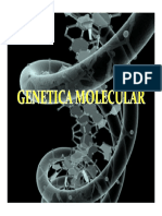 4.Genética Molecular