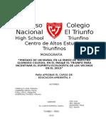 Monografia Roberto 1 Corregido