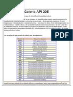Galeria API 20E