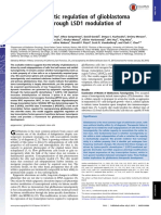 glioblastoma5.pdf