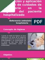 Elaboración y Aplicación Del Plan de Cuidados De
