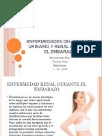 Enfermedades Del Aparato Urinario Y Renal Durante El.pptx