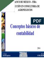 Conceptos basicos de contabilidad.pdf