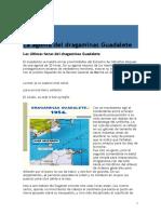Dragaminas Guadalete.doc