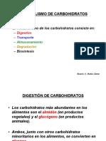 metabolismo-de-carbohidratos2.pdf