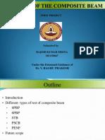 Term paper pdf.pdf