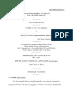 United States v. Eric Hayes, 3rd Cir. (2011)