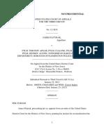 James Patyrak v. PTLM. Timothy Apgar, 3rd Cir. (2013)