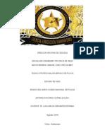 ensayo del nuevo codigo de policia.docx