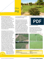 Benefits+of+Not+Overseeding