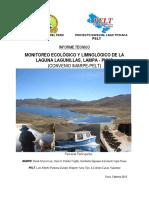 MONITOREO ECOLÓGICO Y LIMNOLÓGICO DE LA LAGUNA LAGUNILLAS, LAMPA - PUNO, 2014