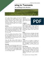 WfW Olive Factsheet.pdf
