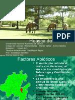 Bosque de Las Truchas Hidalgo (Mèxico)
