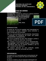 powerPoint de AVENA.pptx