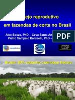 20130312113416 1. Gestao Reprodutiva Em Exploracoes de Carne No Brasil - Dr. Alex Souza