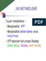 Regulasi Metabolisme.pdf