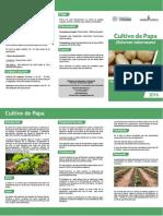 [Triptico] Guía técnica para cultivo de papa (Paraguay)